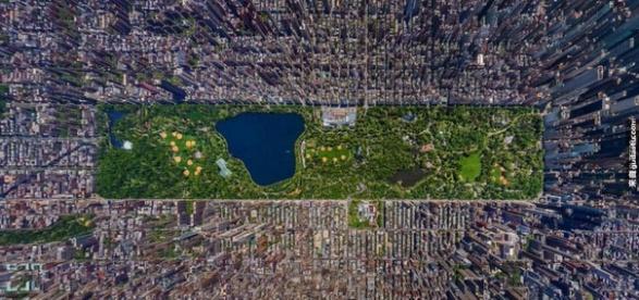 地球村紐約市12